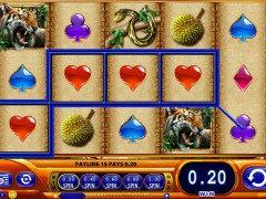 Amazon Queen slotgames77.com William Hill Interactive 5/5