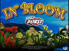In Bloom - IGT Interactive