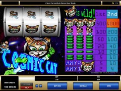 Cosmic Cat slotgames77.com Microgaming 1/5