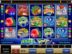 What A Hoot - Microgaming