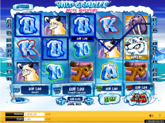 Wild Gambler 2: Arctic Adventure - Ash Gaming