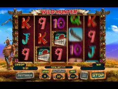 Wild Hunter slotgames77.com Playson 5/5