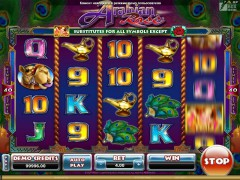 Arabian Rose slotgames77.com Microgaming 5/5